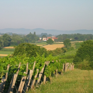 Vollmersweiler 3