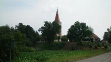 Minfeld - Nordic Walking Tour 8 - Rundtour