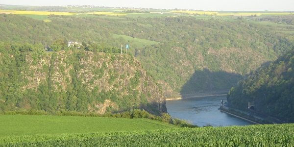View over the Loreley rock