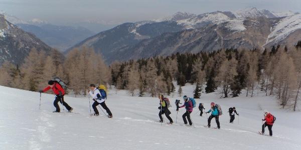 Wunderschönes Aufstiegsgelände, nie zu steil und daher herrlich zum Schneeschuhwandern.