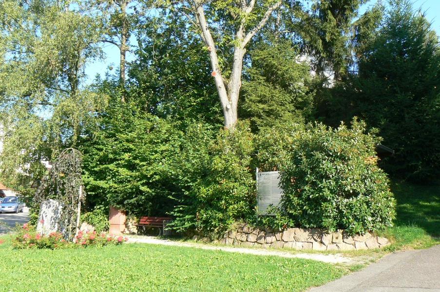 Achern-Oberachern: Keltischer Baumpfad