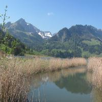Blick von Sensebrücke Richtung Schwarzsee