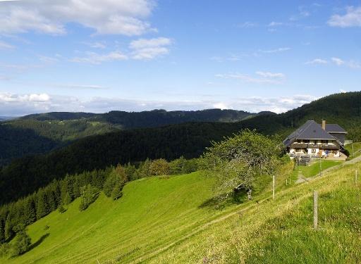 Kirchzarten - Auf den Spuren des Black Forest Ultra-Bike