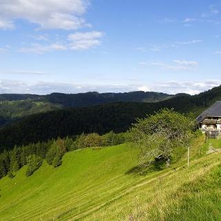 Höfener Hütte - hoch über dem Dreisamtal