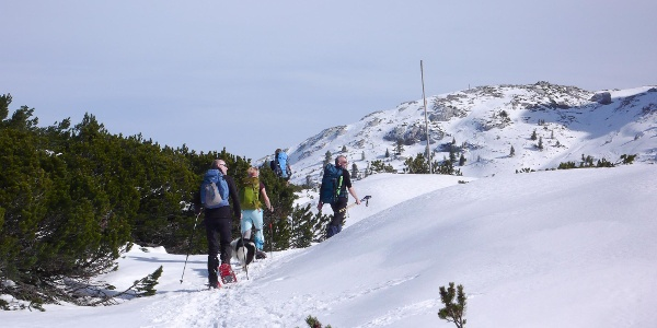 On our way back to Wiesberghaus