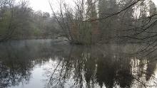 Frankfurter Oberwald: Joggingrunde 9km