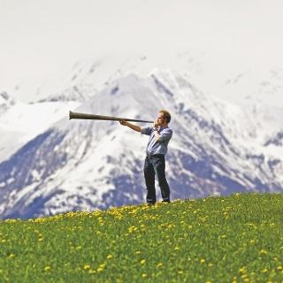 Bergwiese bei Ilanz