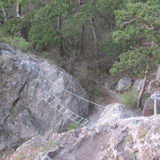 Seilbrücke Mödlinger Klettersteig