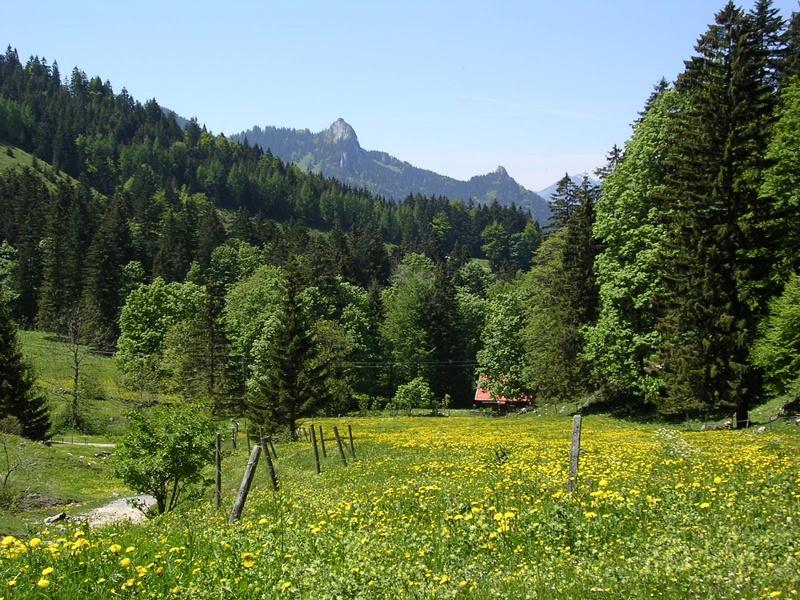 Samerberg - über die Spatenau zur Hochries - DAV-Weg Nr. 216 c