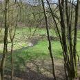 das wildromantische Eifgenbachtal