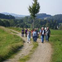 Blick auf Borstendorf vom Höhenweg