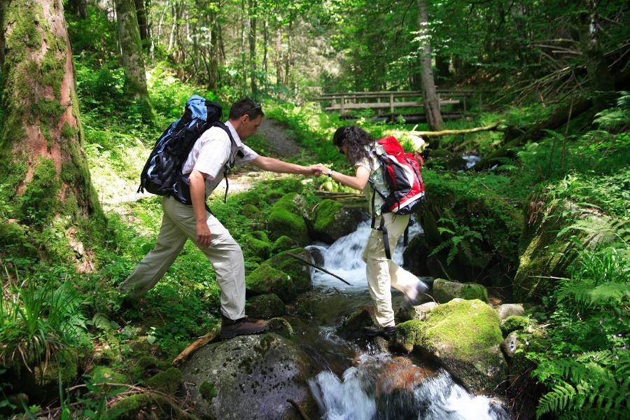 Todtmoos: Schluchtensteig Schwarzwald, 5. Etappe: St. Blasien - Todtmoos - KONUS