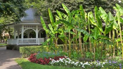 Der Stadtgarten von Radolfzell gilt als schönster Wartesaal Deutschlands