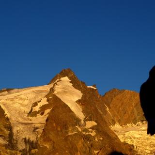 Gamsgrube 2540 m