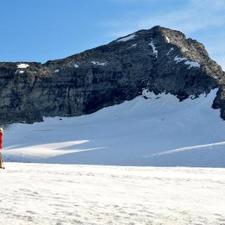 Stampflkees 2805 m