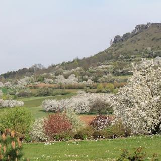 Blick zum Rodenstein (Walberla)