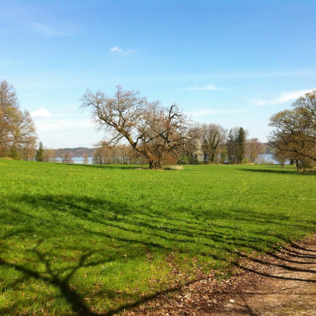 Bernrieder Parklandschaft (Antonie Schmid)