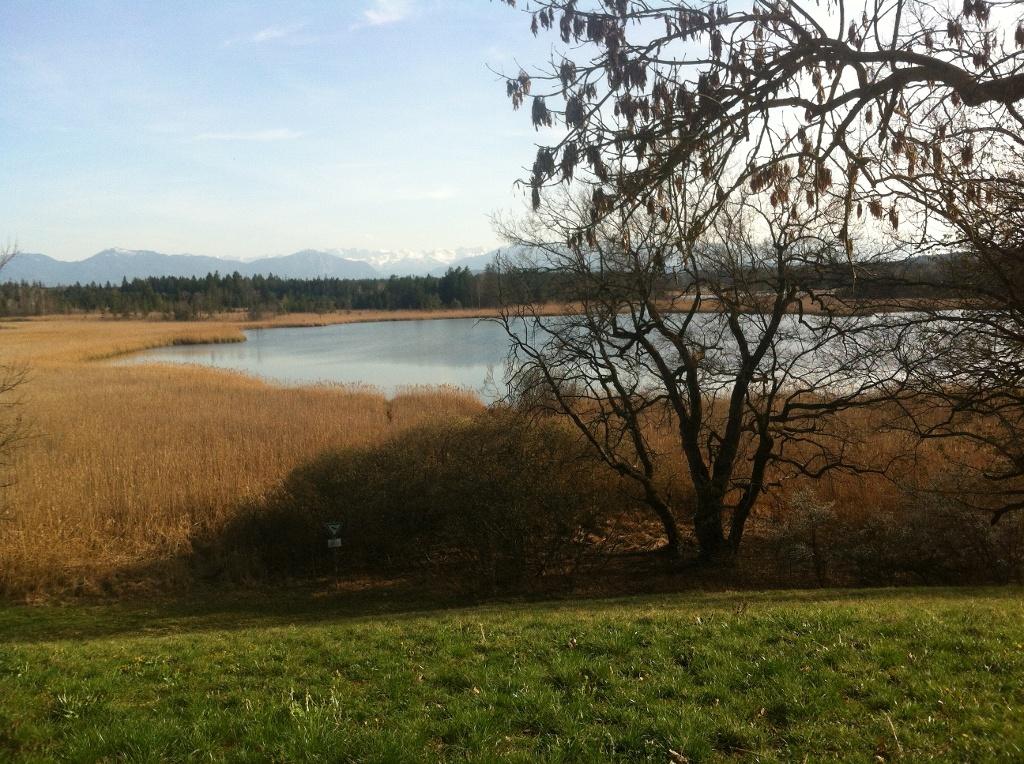 Aussicht auf den Gartensee (Antonie Schmid)