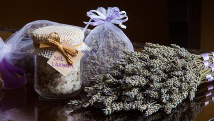 Lavendel aus der Goriska Brda