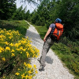 Trekking alle Terme di Comano