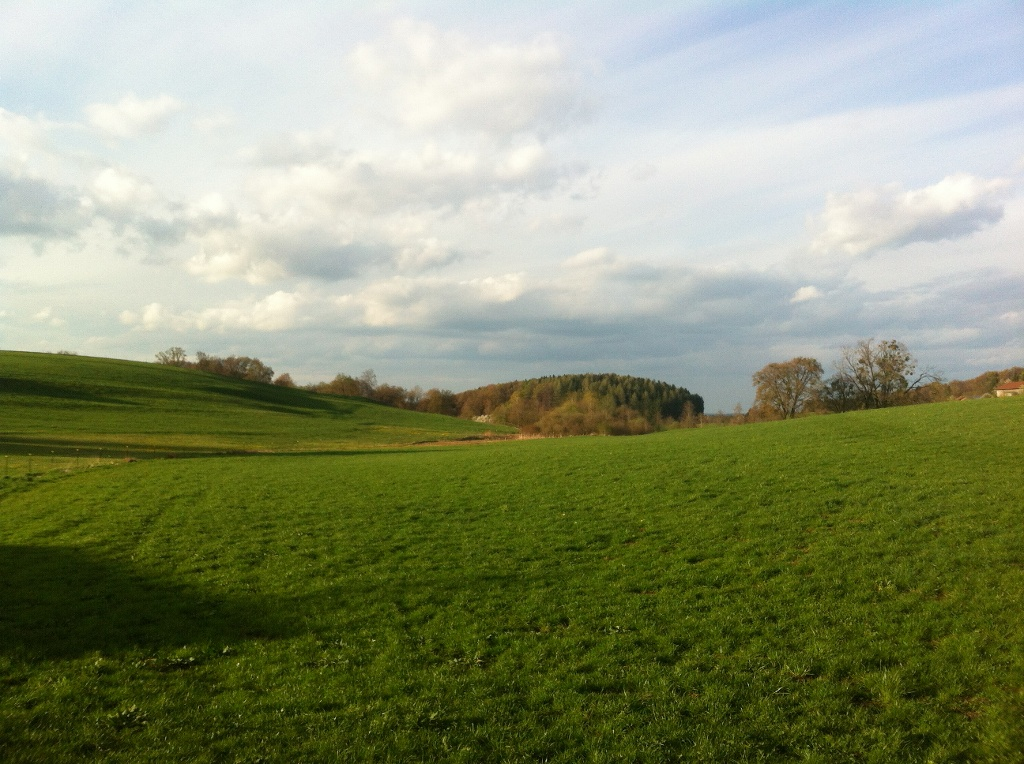 Ausblick von Arnried (Antonie Schmid)