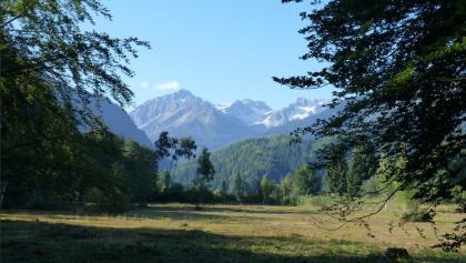 der Moorweiher bei Oberstdorf