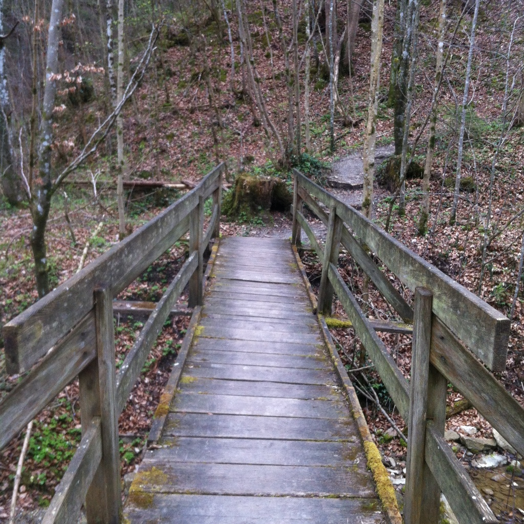 Holzbrücke über den Reitnerbach (Antonie Schmid)