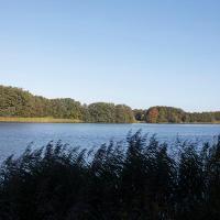 Neuenkirchener See, Uferweg
