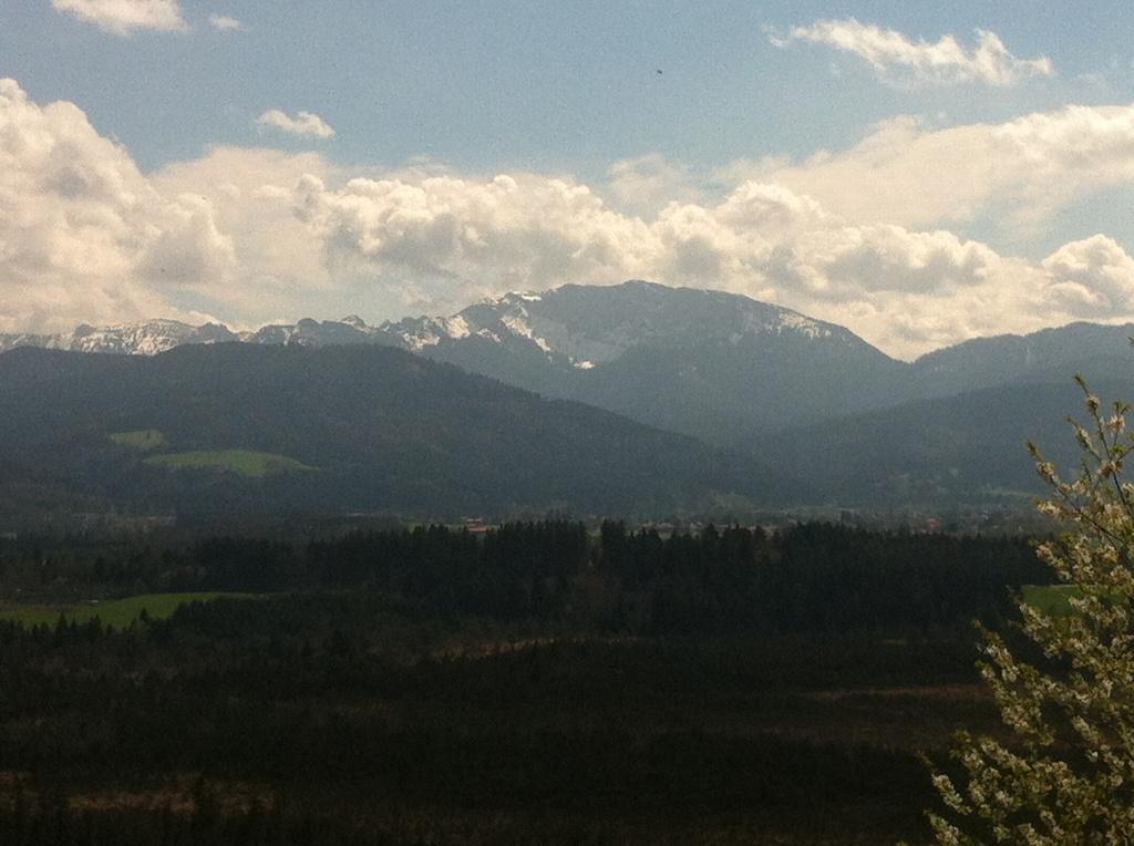 Weitblick auf die Alpen (Antonie Schmid)