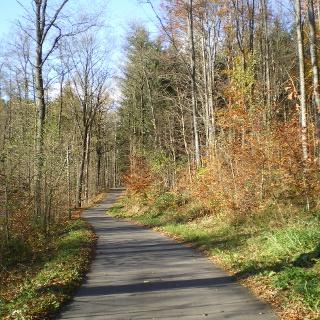Rund um Borstendorf - mit Schachwanderweg