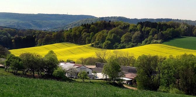 Bauernhof in blühendeer Landschaft