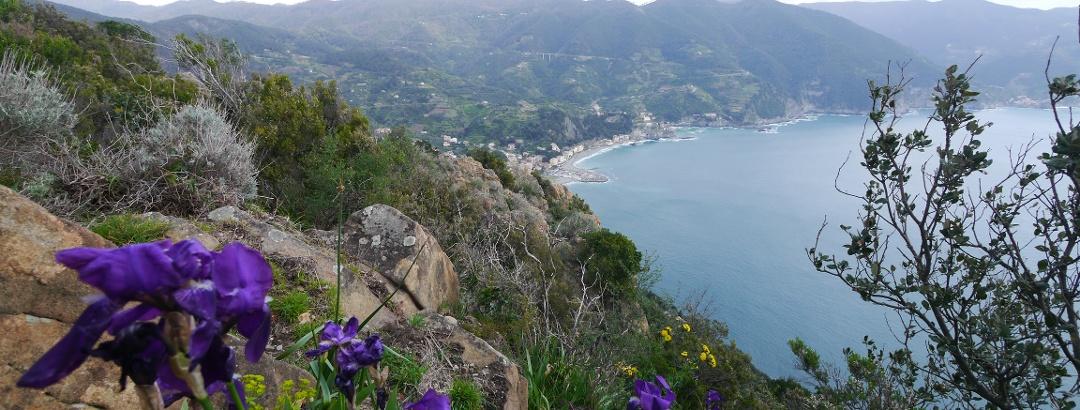 Blick über Monterosso und Cinque Terre