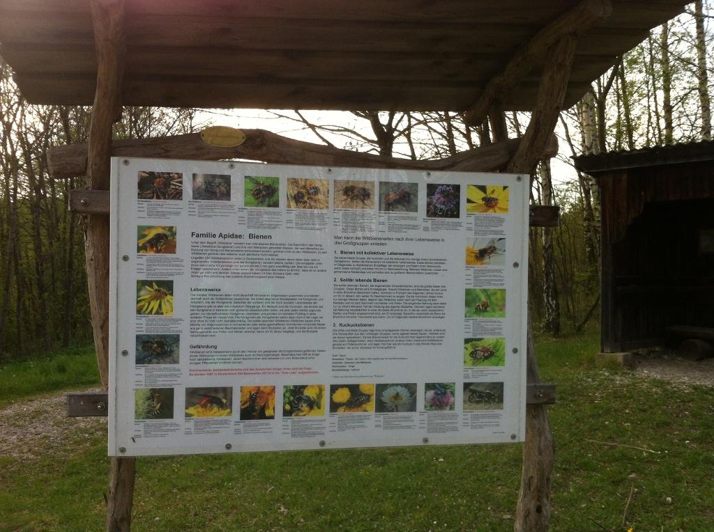 Informationstafel zum Insektenhotel (Antonie Schmid)