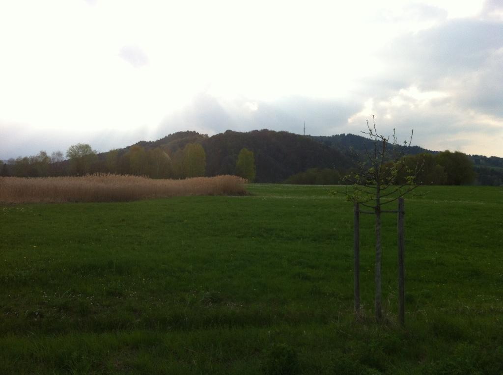 Vom Weg kann man die Alpen und den Hohen Peißenberg erblicken (Antonie Schmid)
